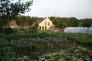 tuin achtergrond